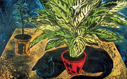 Садівник підвіконня